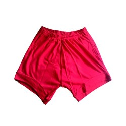 Yoga Shorts - Iyengar Type (Red)