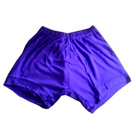 Yoga Shorts - Iyengar Type (Purple)